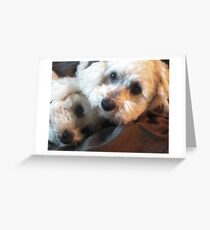 Two Sleepy Heads! Greeting Card