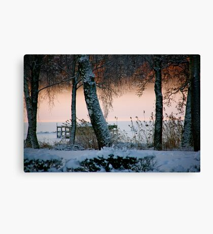 Mists of time Canvas Print
