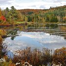 New England in Fall - Please view large by AnnDixon