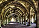 Fountains Abbey by Svetlana Sewell