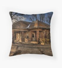 The George Animal Hospital Throw Pillow