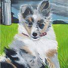 Happy  -A  Sheltie  Puppy by Jedro