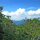 Blue Ridge Mountain View by glennc70000
