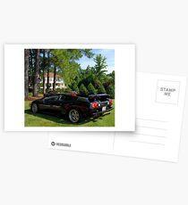 Passive Bull Postcards