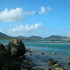 Orient Bay - Saint Martin  by islefox