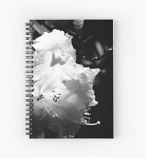 In the shadows #1 Spiral Notebook