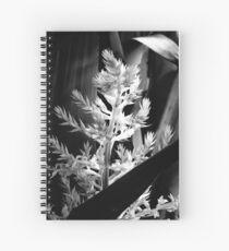 In the shadows #2 Spiral Notebook