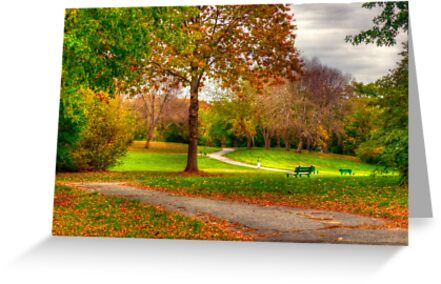 A Walk In Autumn by Monica M. Scanlan