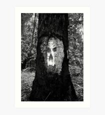 The face in the tree Art Print