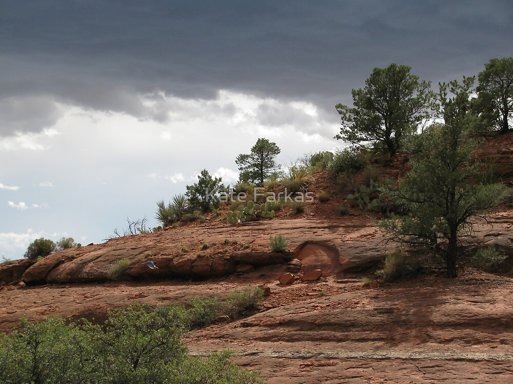Moody sky in Sedona by Kate Farkas