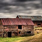 Two Barns, Dayton WY by Timothy S Price