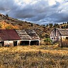 Montana Ranch by Timothy S Price