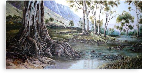 Glorious Gum - Flinders Ranges by Diko