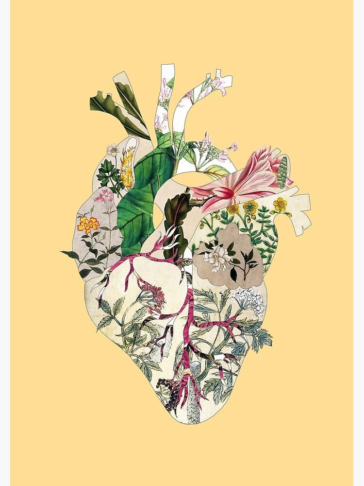 Vintage Botanical Heart - sunshine by BiancaGreen