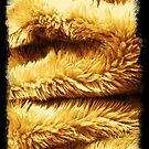 Golden Fleece. by Tom Mostert