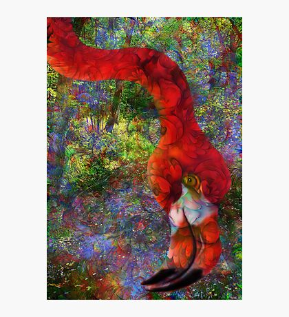 Lofty Dreams Photographic Print