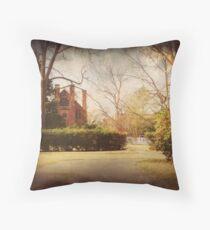 Palmer Marsh House, Bath, NC Throw Pillow