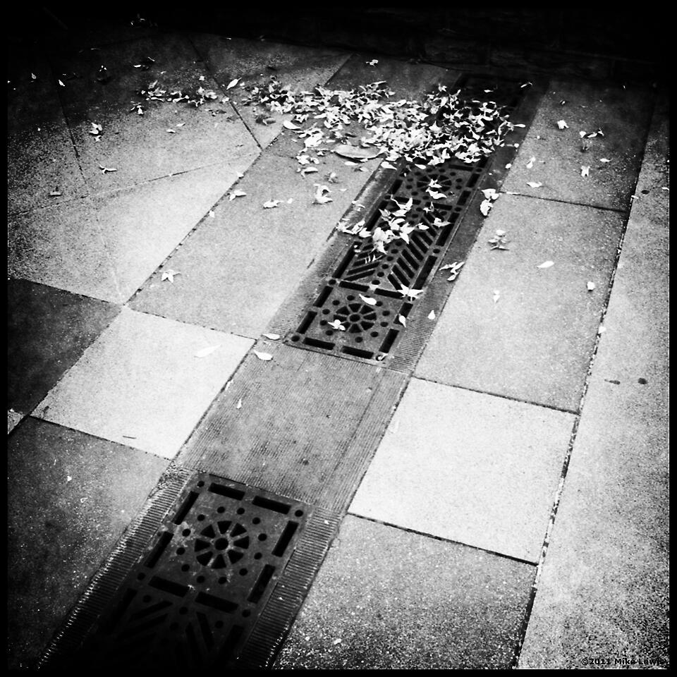 Storm Drain by Mike Lewis