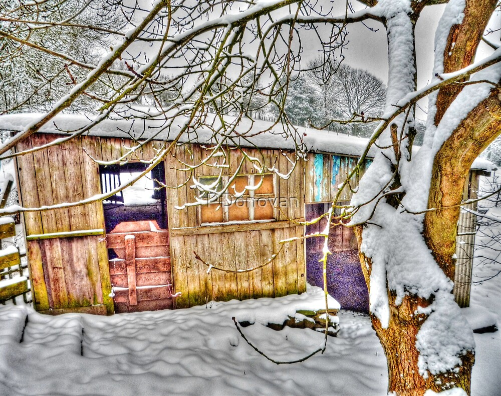 The Old Stable - Winter Countryside - Shropshire UK by PDonovan
