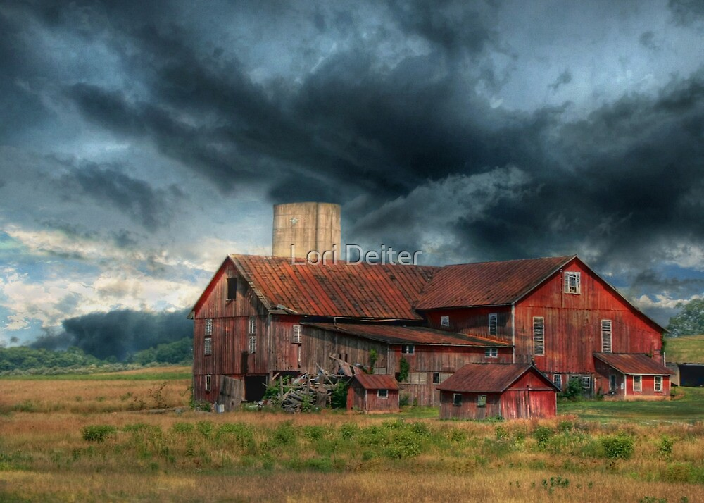 WEATHERING THE STORM by Lori Deiter