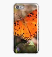 Gulf Fritillary iPhone Case/Skin