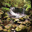 Horseshoe Falls, Tasmania by TazzieTan