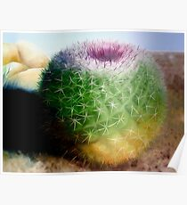 """""""Spike"""" - oil painting of a cactus Poster"""