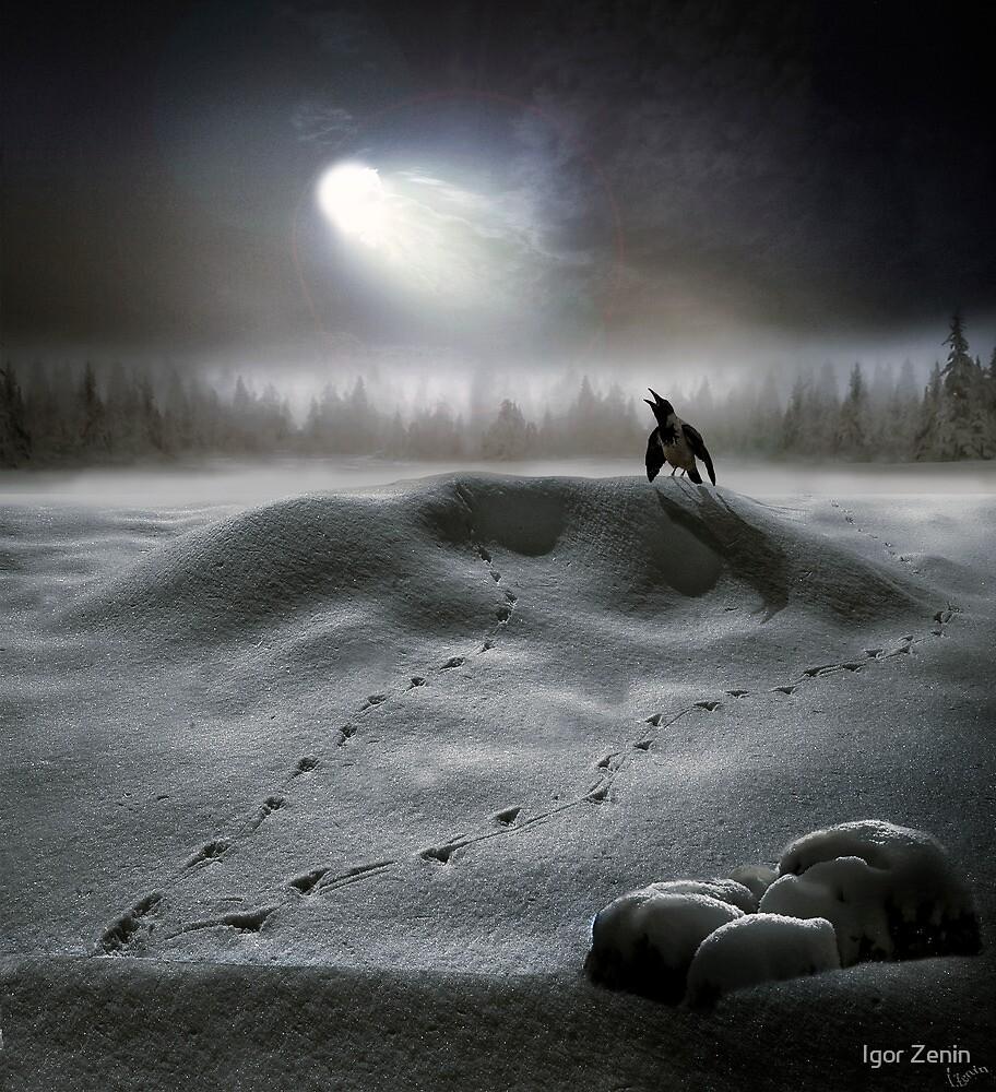 Moon Song by Igor Zenin