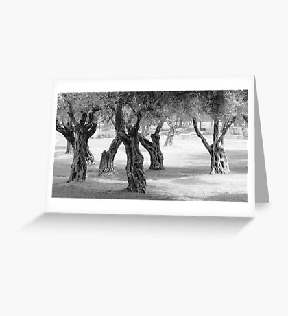 Knotted Copse Greeting Card
