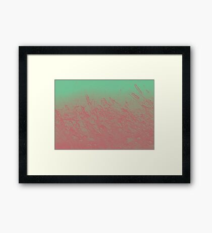 Cotton Candy Cat-tails Framed Print