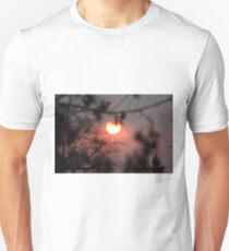 God's beauty in the midst of disaster T-Shirt
