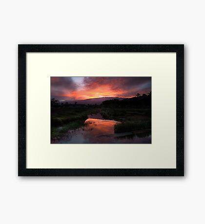 morning catch Framed Print