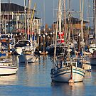 Sailboats in Monterey Bay (Monterey, California) by Brendon Perkins