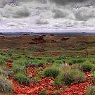 Chichester Range by Sheldon Pettit