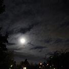After dark by Richard  Willett