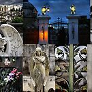 Recoleta cemetry by Robyn Lakeman