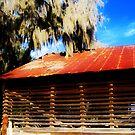 Tobacco Barn by Debbie Robbins