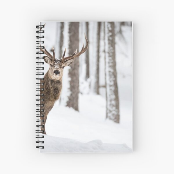 Red deer stag Christmas  Spiral Notebook