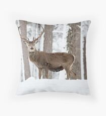 Red deer standing stag Christmas  Throw Pillow