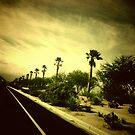 29 Palms by KeriFriedman