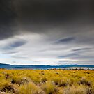 Mono Lake with a Grand Sky by Zane Paxton