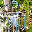 Antique Birdcage by AmyAutumn