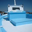 blue boat by annet goetheer