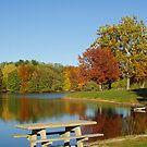 Autumn on the Lake by DougOlsen