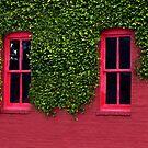 Windows by BobJohnson
