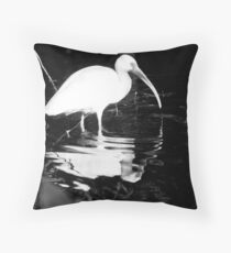 Ibis Searching For Nibbles Throw Pillow