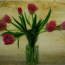 Vase of Tulips by Karen  Betts