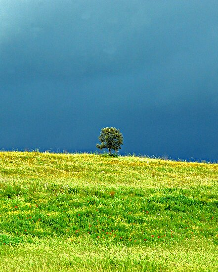 Alone in a Storm-Monterosi, Italy by Deborah Downes