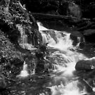 Falls in Black and White by Rodney Lee Williams