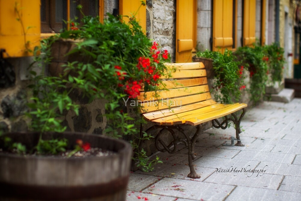 Meet Me at our Bench by Yannik Hay